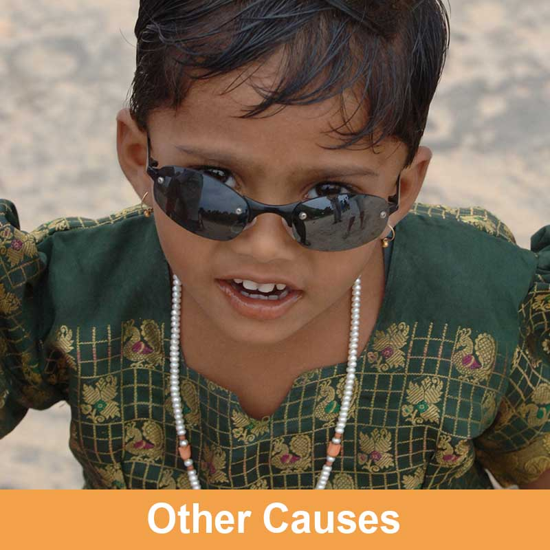 Other Causes of Avoidable Blindness